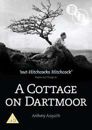 A Cottage On Dartmoor (1929) (UK Import), DVD