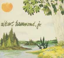 Albert Hammond Jr (The Strokes): Yours To Keep, CD