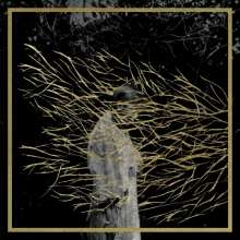 Forest Swords: Engravings, CD