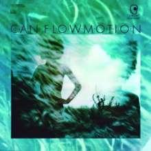 Can: Flow Motion, LP