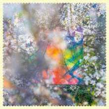 Four Tet: Sixteen Oceans, CD