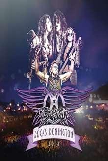 Aerosmith: Rocks Donington 2014 (2 CD + DVD), 2 CDs