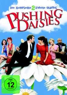 Pushing Daisies Season 2, 4 DVDs