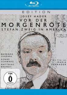 Vor der Morgenröte: Stefan Zweig in Amerika (Blu-ray), Blu-ray Disc