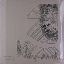Max Cooper: Yearning For The Infinite (Colored Vinyl), 2 LPs
