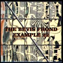 The Bevis Frond: Example 22, CD