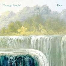 Teenage Fanclub: Here, LP