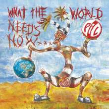 Public Image Limited (P. I.L.): What The World Needs Now..., CD