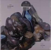 Sex Swing: Type II (Limited Edition) (Grey/Cream Swirl Vinyl), LP