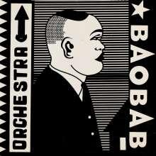 Orchestra Baobab: Tribute To Ndiouga Dieng (180g), LP