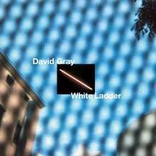 David Gray: White Ladder (2020 Remaster) (White Vinyl), 2 LPs