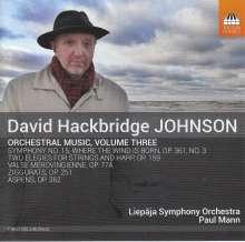 David Hackbridge Johnson (geb. 1963): Orchesterwerke Vol.3, CD