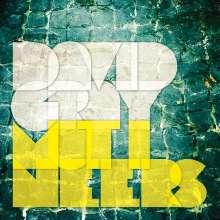 David Gray: Mutineers (180g), 2 LPs