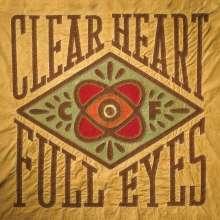 Craig Finn (The Hold Steady): Clear Heart Full Eyes, LP