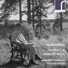 Jean Sibelius (1865-1957): Instrumentawerke & Kammermusik, CD
