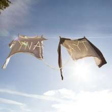 Sorority Noise: You're Not As ____  As You Think, LP