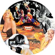 Nurse With Wound: Sylvie And Babs (Picture Disc), LP