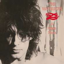 The Waterboys: A Pagan Place, CD