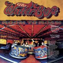 The Waterboys: Room To Roam (Half Speed Master), 2 LPs