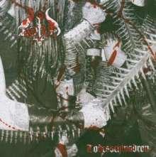 Zorn: Todesschwardrone, CD