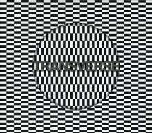 Carter Tutti Void: Transverse (LP + CD), LP