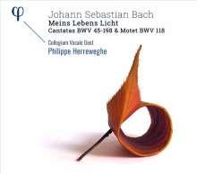 Johann Sebastian Bach (1685-1750): Kantaten BWV 45 & 198, CD