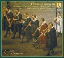 Bellissimo Splendore - Musik am Brüsseler Hof des 17. Jahrhunderts, CD