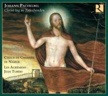 Johann Pachelbel (1653-1706): Kantaten & Motetten, CD