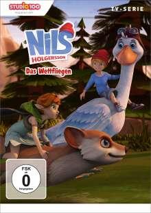 Nils Holgersson (CGI) DVD 2: Das Wettfliegen, DVD