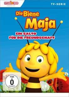 Die Biene Maja 15 - Ein Salto für die Freundschaft, DVD
