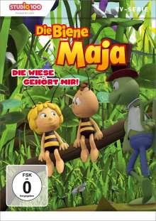 Die Biene Maja 19 - Die Wiese gehört mir!, DVD
