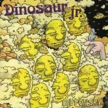 Dinosaur Jr.: I Bet On Sky, LP