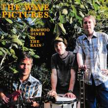 The Wave Pictures: Bamboo Diner In The Rain, CD