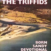 The Triffids: Born Sandy Devotional (Enhanced), CD