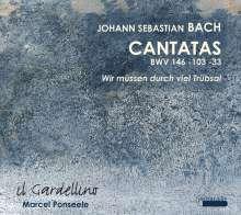 Johann Sebastian Bach (1685-1750): Kantaten BWV 33, 103, 146, CD