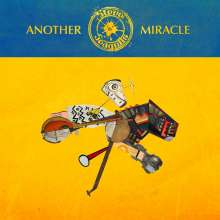 Steve 'n' Seagulls: Another Miracle, CD