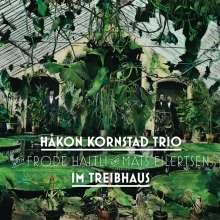 Håkon Kornstad (geb. 1977): Im Treibhaus, LP
