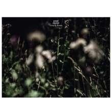 Anneli Drecker: Rocks & Straws, CD