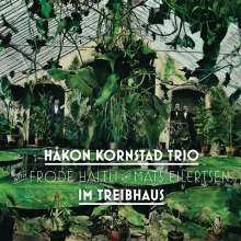 Håkon Kornstad (geb. 1977): Im Treibhaus, CD