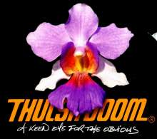 Thulsa Doom: A Keen Eye For The Obvious, CD