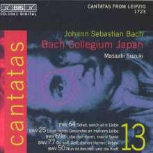 Johann Sebastian Bach (1685-1750): Kantaten Vol.13 (BIS-Edition), CD