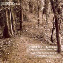 Alfred Schnittke (1934-1998): Konzert für Chor, CD
