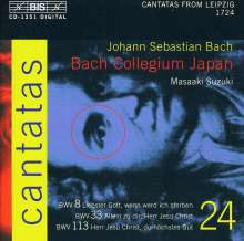 Johann Sebastian Bach (1685-1750): Kantaten Vol.24 (BIS-Edition), CD