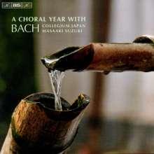 Johann Sebastian Bach (1685-1750): A Choral Year with J.S.Bach, CD
