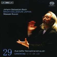 Johann Sebastian Bach (1685-1750): Kantaten Vol.29 (BIS-Edition), SACD