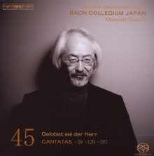Johann Sebastian Bach (1685-1750): Kantaten Vol.45 (BIS-Edition), SACD
