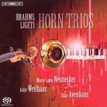 Johannes Brahms (1833-1897): Horntrio op.40, Super Audio CD