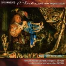 Johann Sebastian Bach (1685-1750): Weltliche Kantaten Vol.5, Super Audio CD