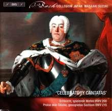 Johann Sebastian Bach (1685-1750): Weltliche Kantaten Vol.8, SACD