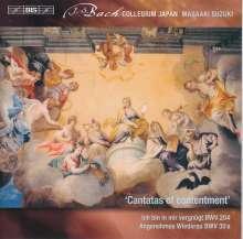 Johann Sebastian Bach (1685-1750): Weltliche Kantaten Vol.10, SACD